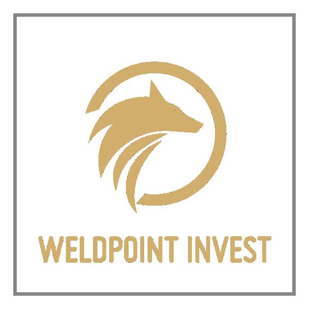logo wpi v3