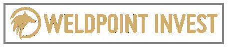 logo wpi v5